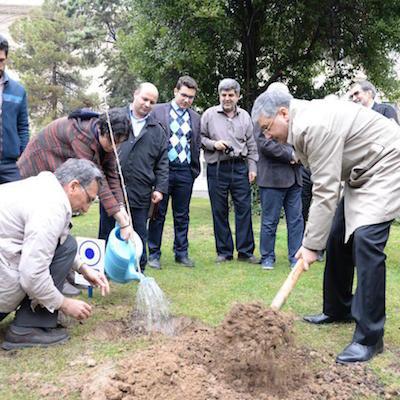 یادبود روز درختکاری